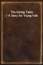 The Daring Twins / A Story for Young Folk